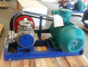 皮带传动NYP转子泵